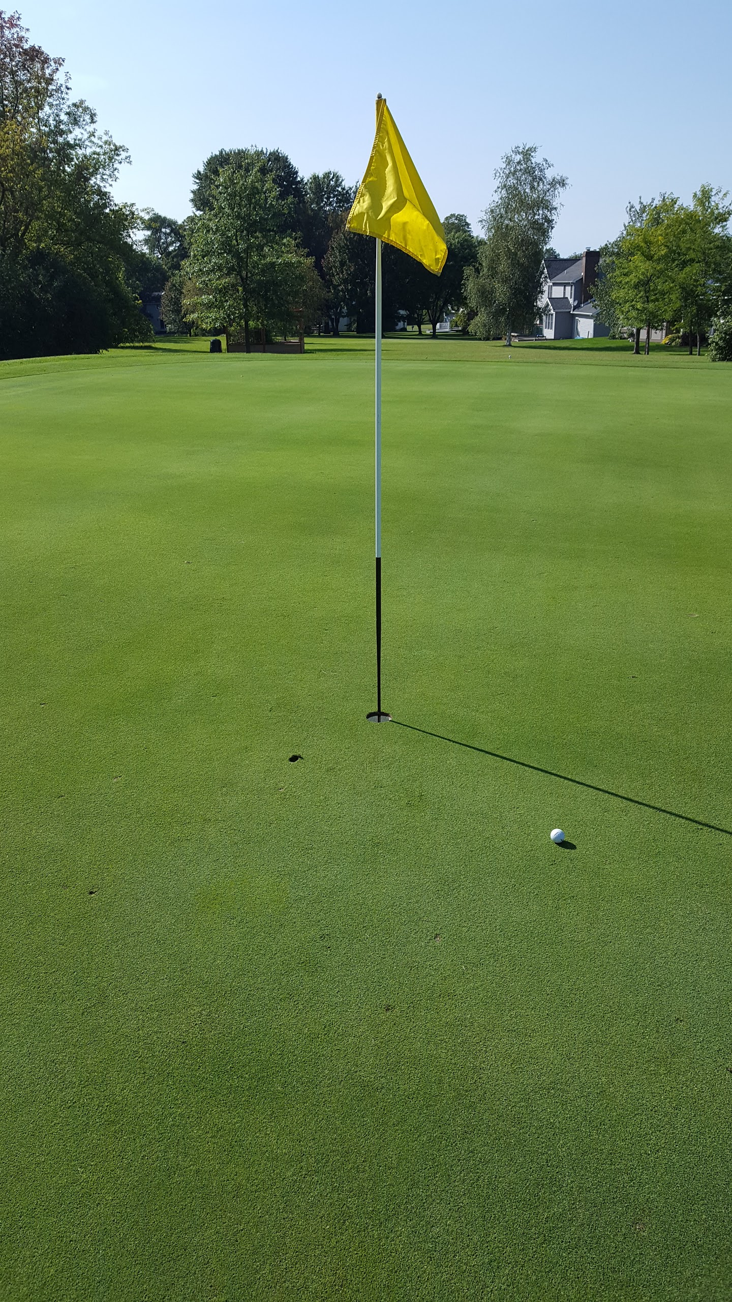 golf green with yellow flag and golf ball near hole